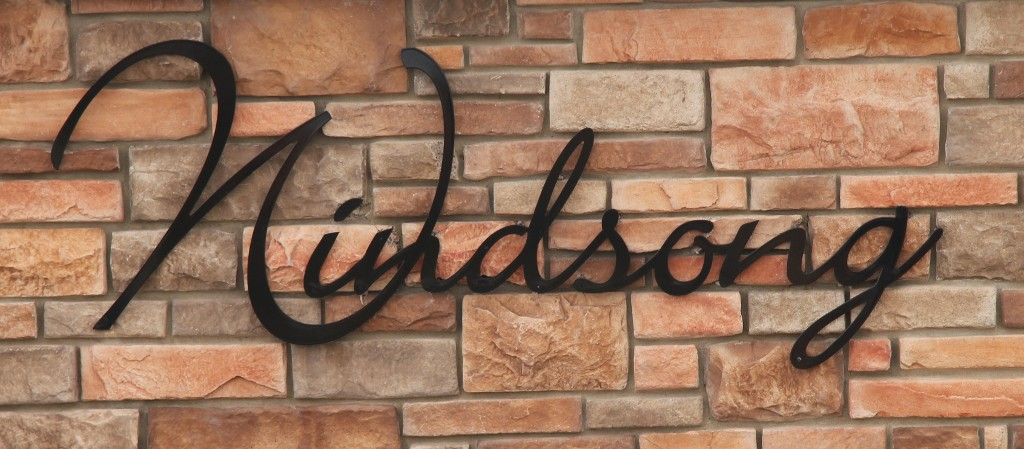 Windsong Airdrie Realtors